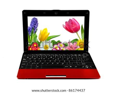 open laptops on white background