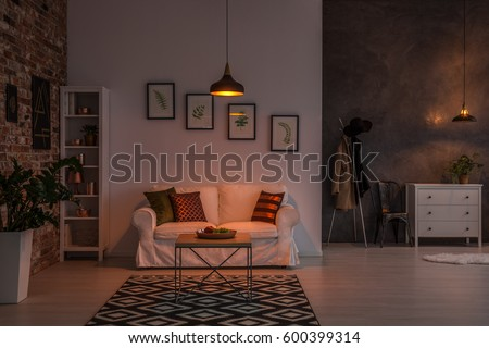 Open living room with couch, carpet, lamp and bookshelf