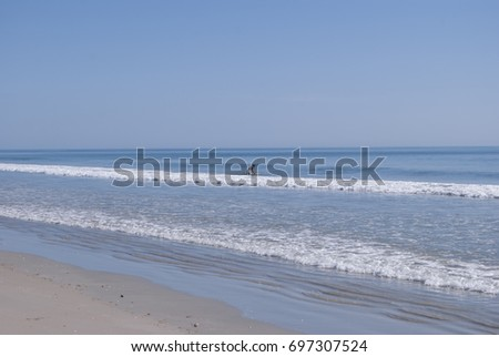 open ocean view in blue color water and sky with no clouds and someone is surfing  in the distance