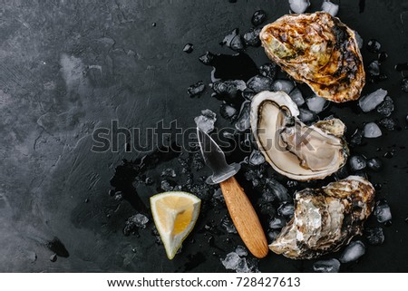 Open oyster with lemon and oyster knife on a dark background. Copy space. view from above #728427613