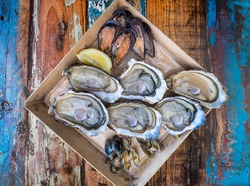 Open oysters, mussels and of Meretrix Lyrata clams in a plate, top view. Assortment of freshly caught of sea molluscs on an oyster farm restorant for foodie of Mediterranean cuisine, France.