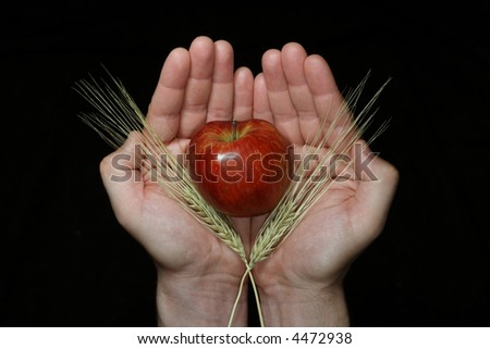 Open palms with harvest (apple and cereals)