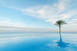 open pool on the shores of the exotic ocean and the reflection of palm trees in the water. summer landscape. panoramic picture
