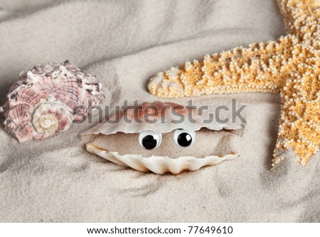 Open seashell on a beach with funny looking eyes