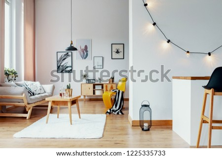 Open space flat interior with posters and lights on the wall, wooden coffee table with cactus and whiskey in glass carafe in real photo with window with pastel pink drapes #1225335733