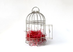 Open Steel Bird Cage with Pieces of Red Paper as Nest Isolated on White Background