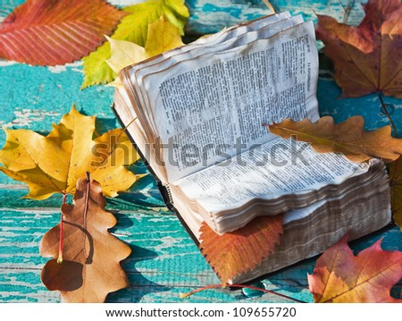 open the Bible and the fallen autumn leaves