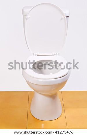 open toilet bowl isolated on glaze tile