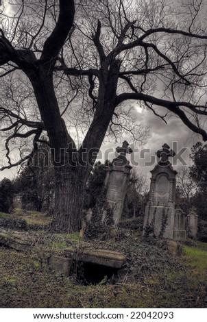 opened graves hdr - stock photo