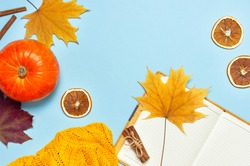 Opened notebook, orange pumpkin, cinnamon, yellow autumn maple leaf on blue background top view flat lay. Сoncept of study, working table, halloween. Space for text