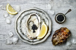 Opened oyster with black sturgeon caviar and lemon on ice in metal plate on grey concrete background. Top view, flat lay, copy space