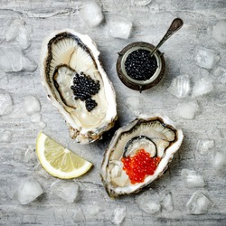Opened oysters with red salmon and black sturgeon caviar and lemon on ice on grey concrete background. Top view, flat lay, copy space.