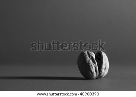 Opened walnut on a gray background.