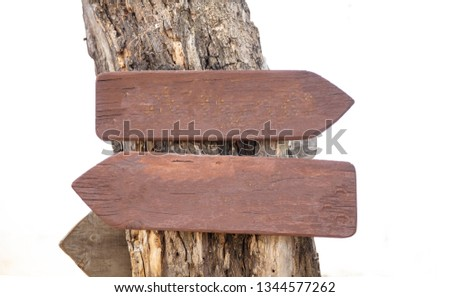 Opposite directions arrow signs. Two blank wooden pointers on a tree trunk, closeup view, space for text #1344577262