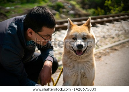 Orange akita dog looking straight at camera and kneeling man are making a brake from a walk. The background around rails is blurred. #1428675833