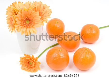 Orange and african daisy flower on a white background