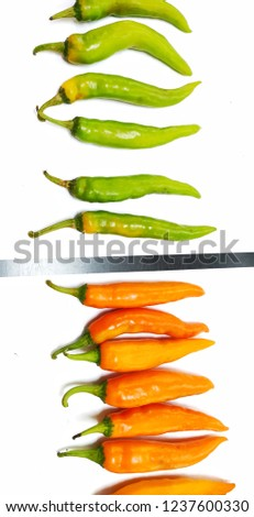 Orange and green hot chili pepper (Solanaceae Capsicum) on white background.