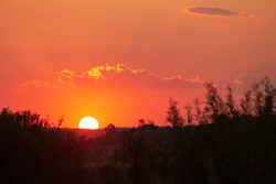 Orange and red African bushveld sunset