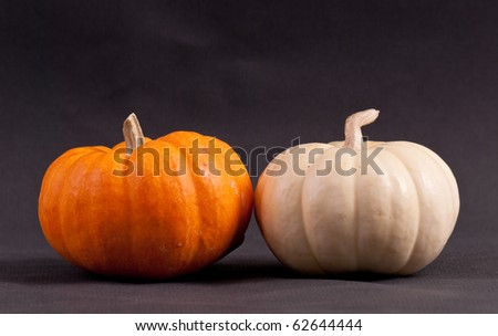 Orange and White Mini Pumpkins