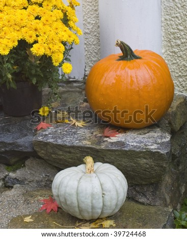 Orange and white pumpkins and yellow mums on stone steps of front porch for Halloween Thanksgiving