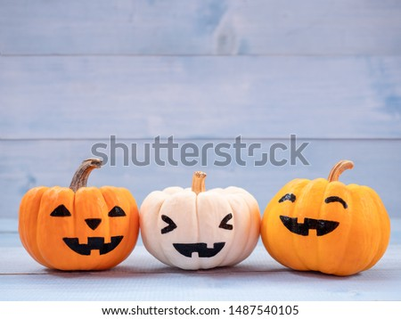 Orange and white pumpkins halloween decorate on blue wooden background. Use for halloween concept.