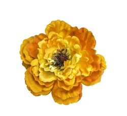 Orange artificial flower isolated on white with clipping path