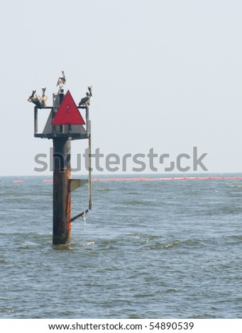 ORANGE BEACH, AL - JUNE 8: Pelicans perch near an oil boom placed in Perdido Pass on June 8, 2010 in in Orange Beach, AL as the BP oil slick threatens wildlife and tourism in the vacation resort.