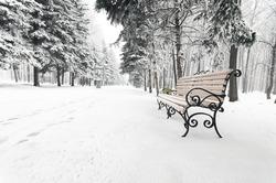 orange bench in the winter park Russia