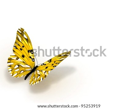 Orange butterfly. Isolated on white background.