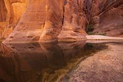 Orange canyon walls reflecting in a water of Guelta d'Archei, Chad