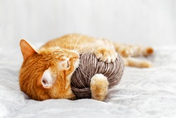 Orange cat playing with a ball of yarn lying on the bed. Shallow focus, blurred background.