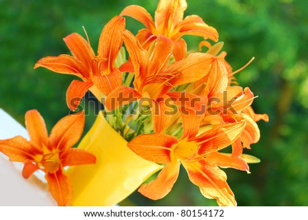 stock photo orange daylily flowers bouquet in yellow vase against green