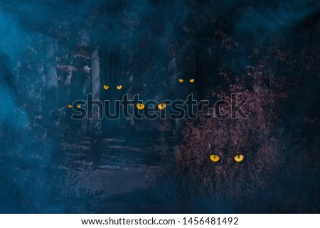 orange eyes of forest spirits sparkle in the night autumn forest around blue mystical fog concept of halloween and mysticism