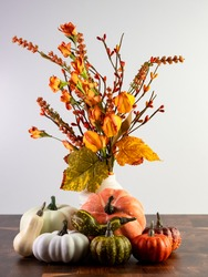 Orange Fall Flowers in a Vase with Little Orange, Green and White Gourds Lined Up In Front On a Wooden Table with a White Wall for Halloween, Thanksgiving or just Fall and Autumn Decor