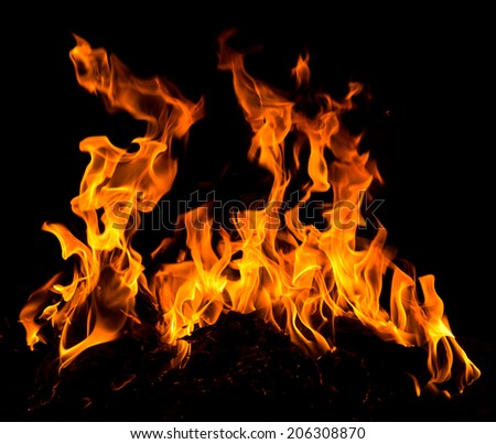 Orange fire flames on a black background #206308870