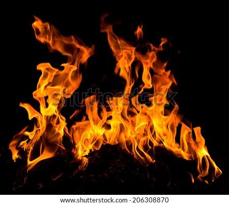 Orange fire flames on a black background #206308870