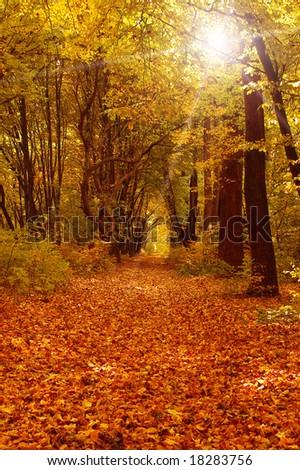 information on autumn season
