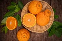 Orange fruit in Bamboo basket on wooden table in garden, Dekopon orange or sumo mandarin tangerine with leaves in wooden background.