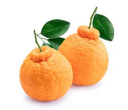 Orange fruit with orange slices and leaves on white background, Dekopon orange or sumo mandarin tangerine with leaves isolated on white background With clipping path.