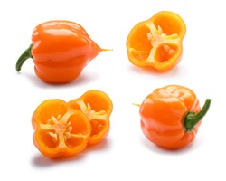 Orange Habanero chile peppers (Capsicum chinense),  whole and halved