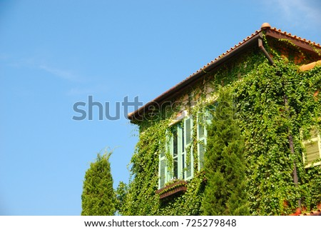 Orange house Greece style with tree with blue sky #725279848