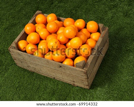 orange in box other angle