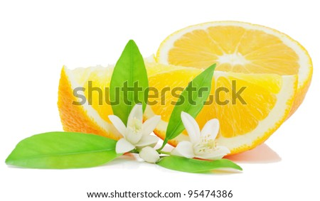 Orange, leaf, flower and slice  isolated on a white background.