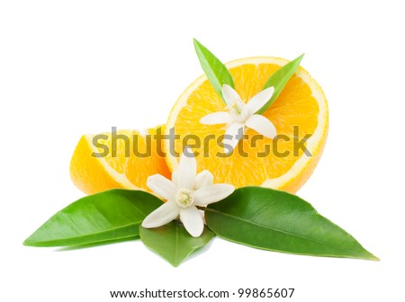 Orange, leaves, flower and slice. Isolated on a white background.
