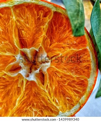 Orange macro orange macro photo