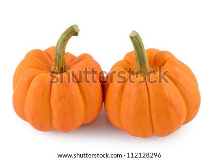 Orange miniature pumpkin