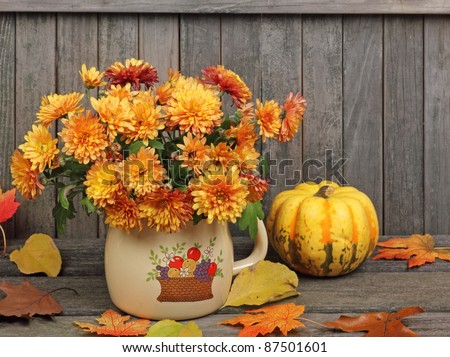 Orange mums in a pot with colorful leaves and squash against a rustic wood fence #87501601