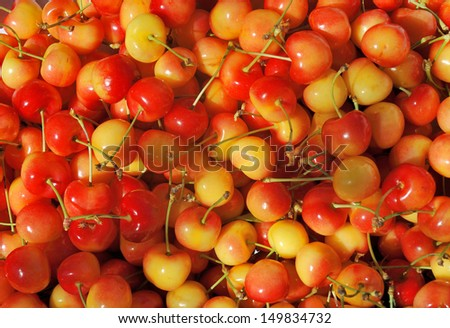 Orange red cherries at the farmers market in France