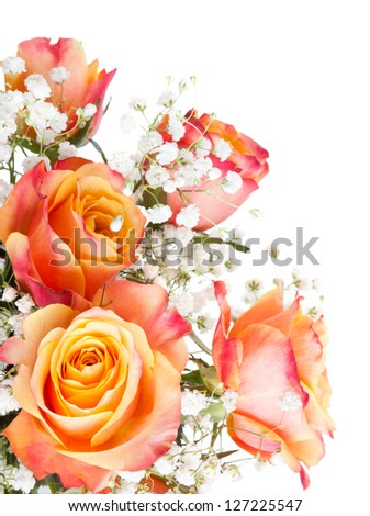 Orange roses with white flowers on a white background