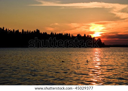 Orange sunset glow beyond a northern Canadian lake at twilight with the silhouette of trees in the foreground.